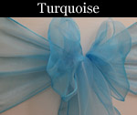 Organza Turquoise